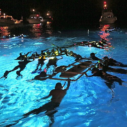Manta ray small group experience with Hawaii Oceanic