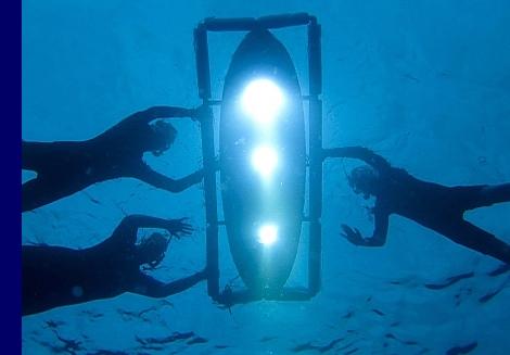 Manta ray night snorkel light board Hawaii Oceanic